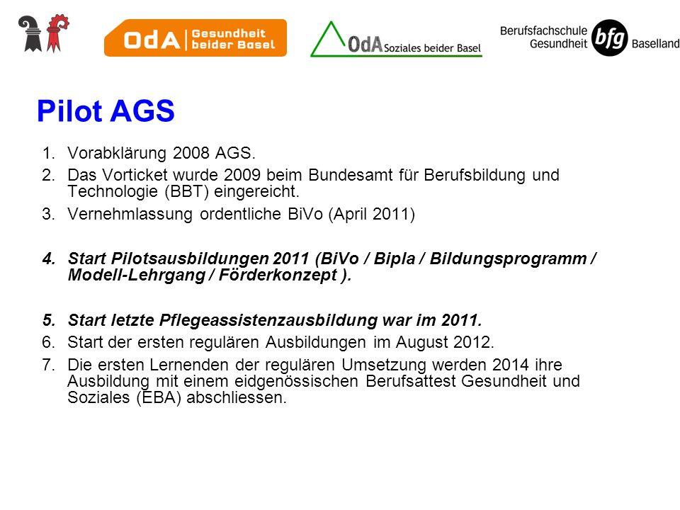 Pilot AGS Vorabklärung 2008 AGS.