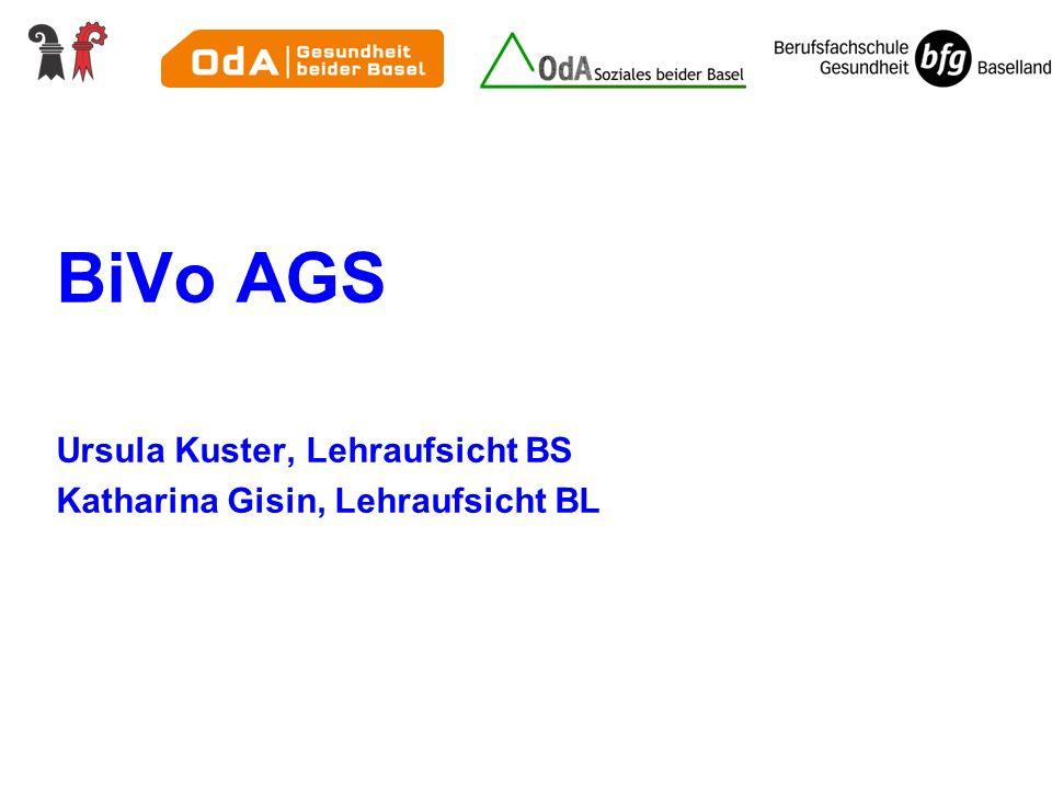 BiVo AGS Ursula Kuster, Lehraufsicht BS