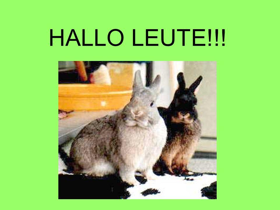 HALLO LEUTE!!!