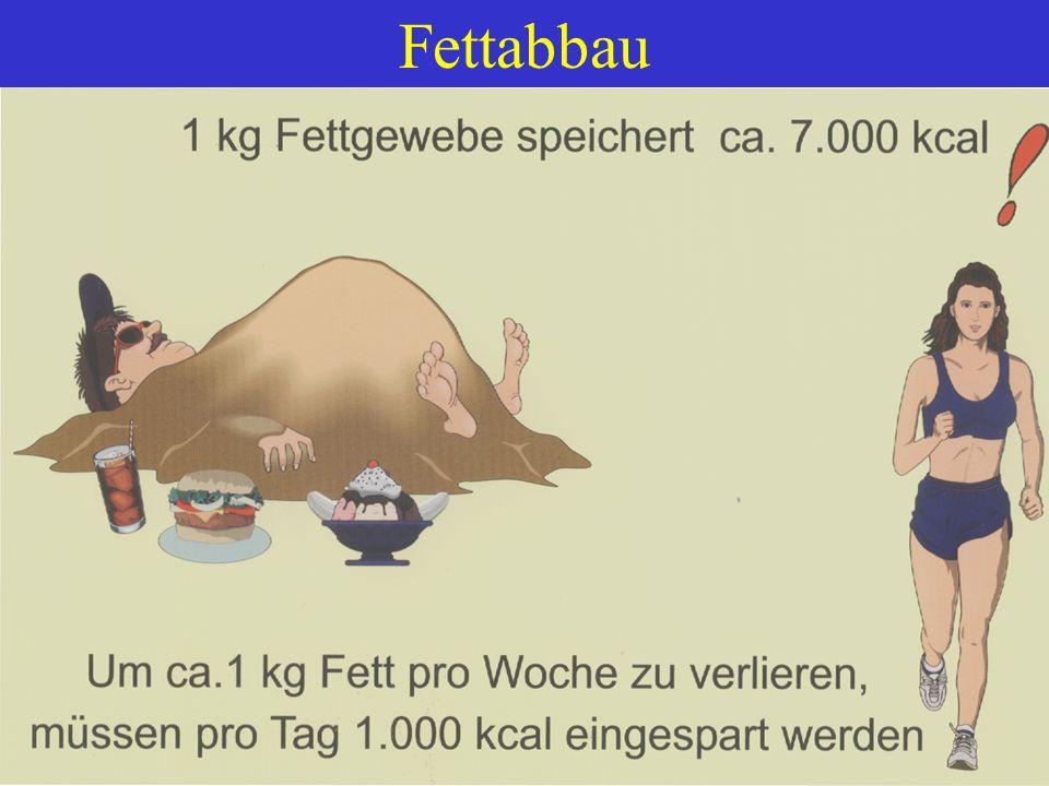 Fettabbau