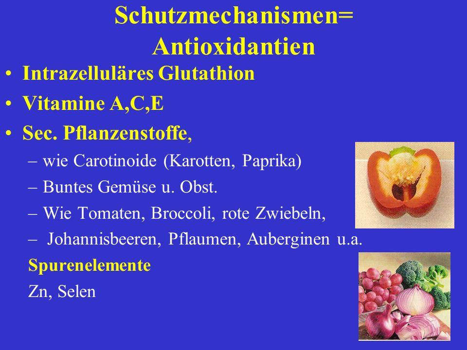 Schutzmechanismen= Antioxidantien