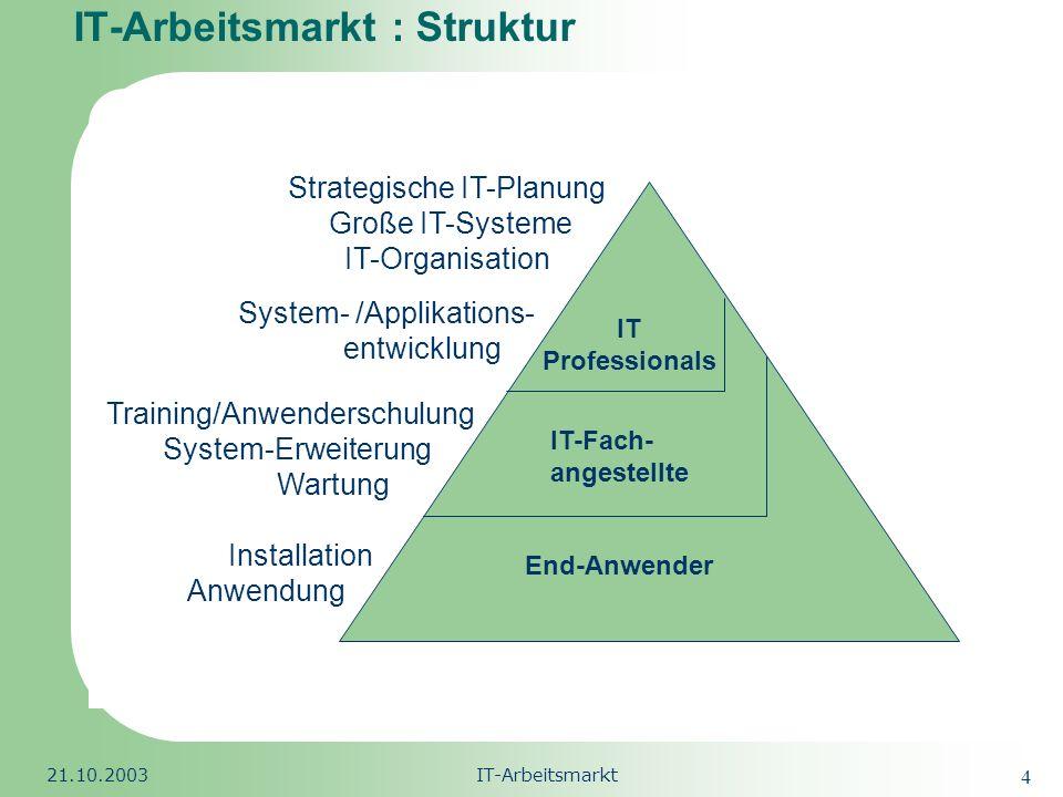 IT-Arbeitsmarkt : Struktur