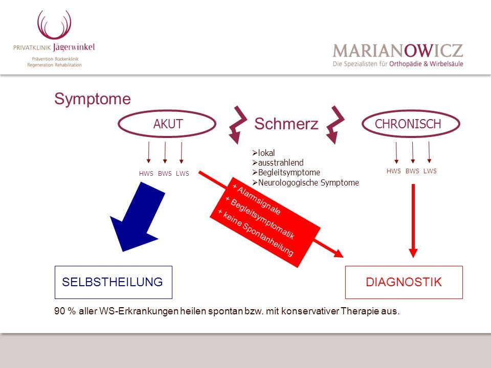 Symptome Schmerz AKUT CHRONISCH SELBSTHEILUNG DIAGNOSTIK