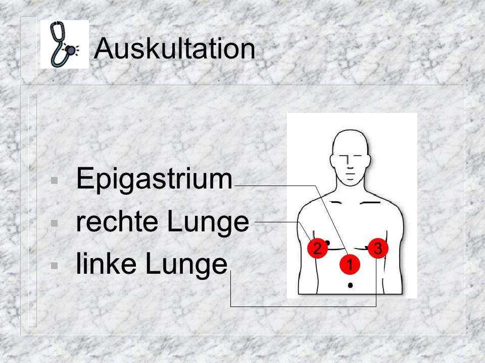 Auskultation Epigastrium rechte Lunge Epigastrium rechte Lunge