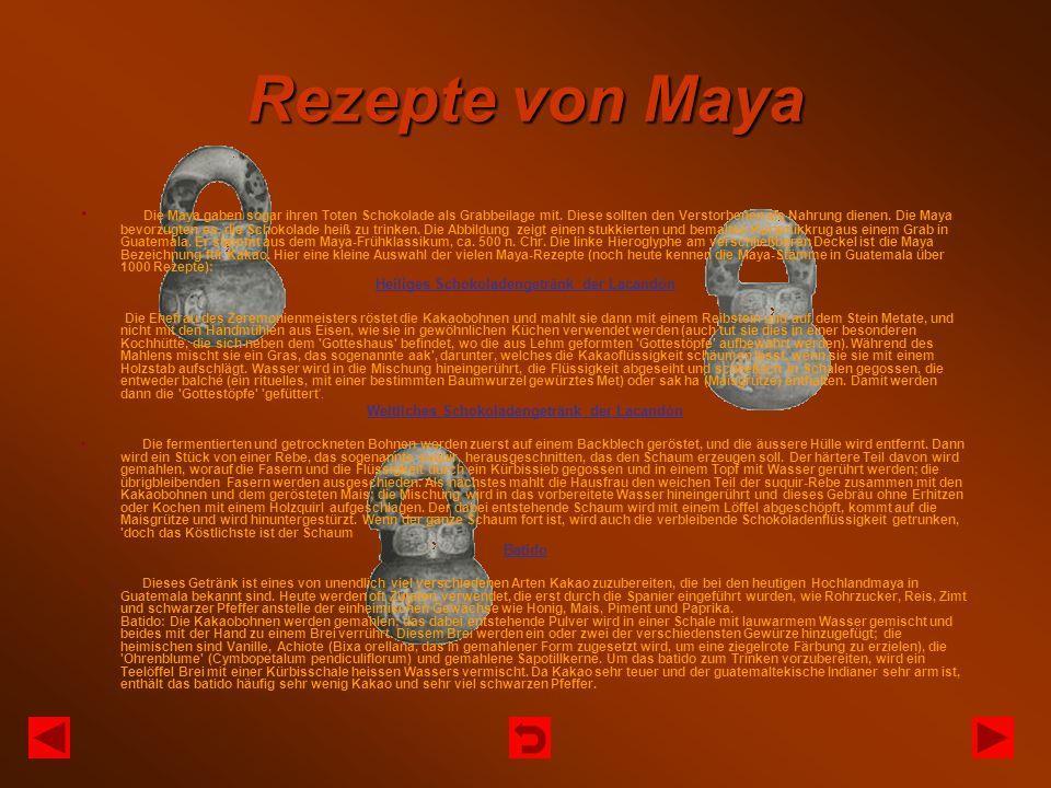 Rezepte von Maya