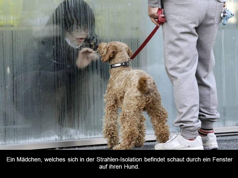 Ein Mädchen, welches sich in der Strahlen-Isolation befindet schaut durch ein Fenster auf ihren Hund.