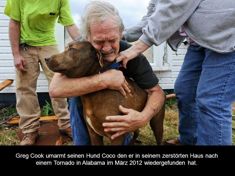 Greg Cook umarmt seinen Hund Coco den er in seinem zerstörten Haus nach einem Tornado in Alabama im März 2012 wiedergefunden hat.