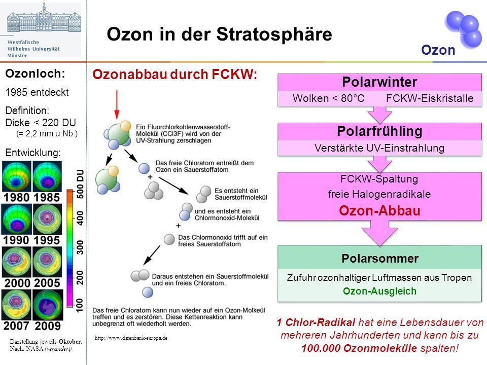 Ozon in der Stratosphäre