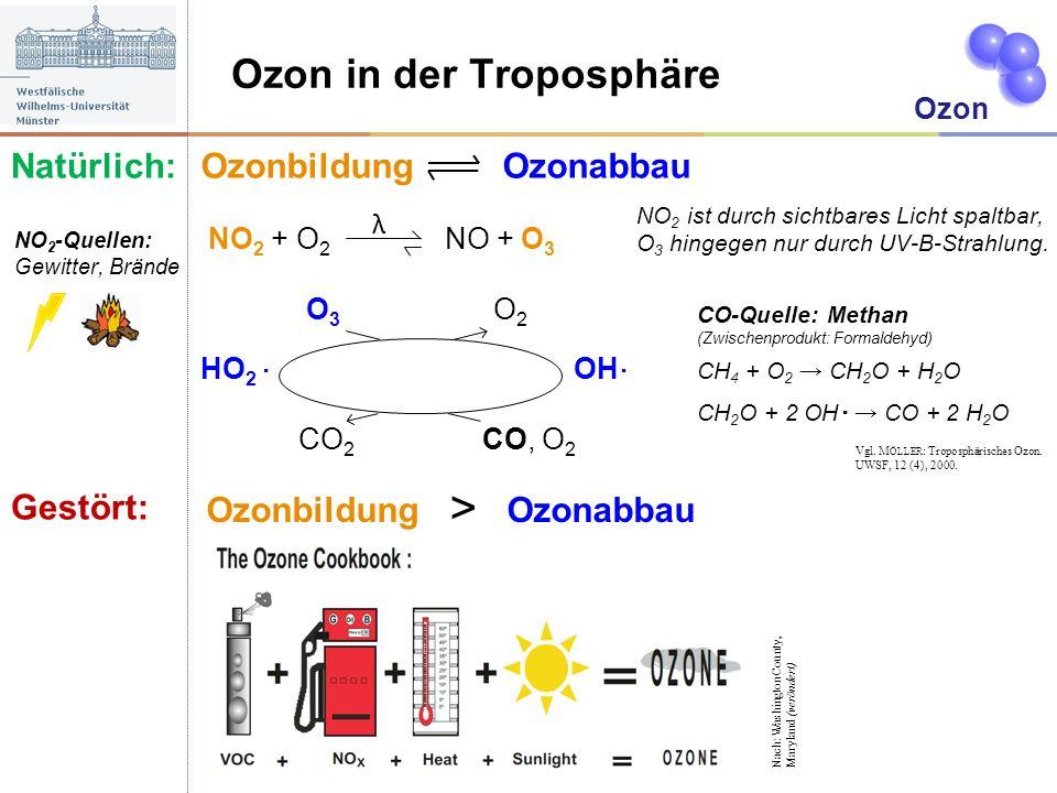 Ozon in der Troposphäre