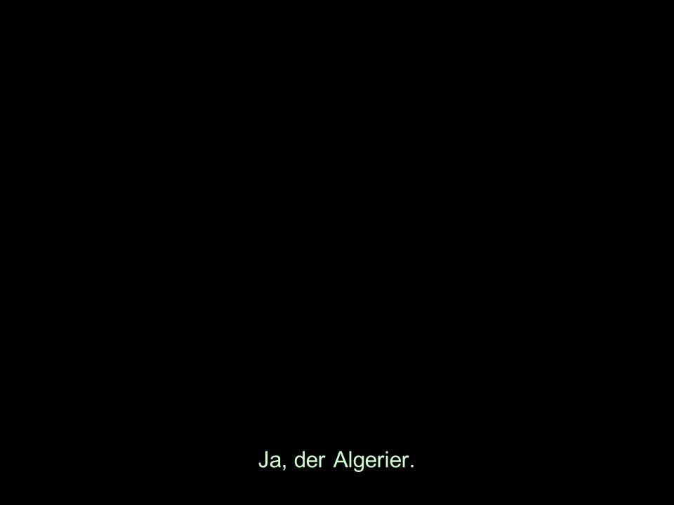Ja, der Algerier.