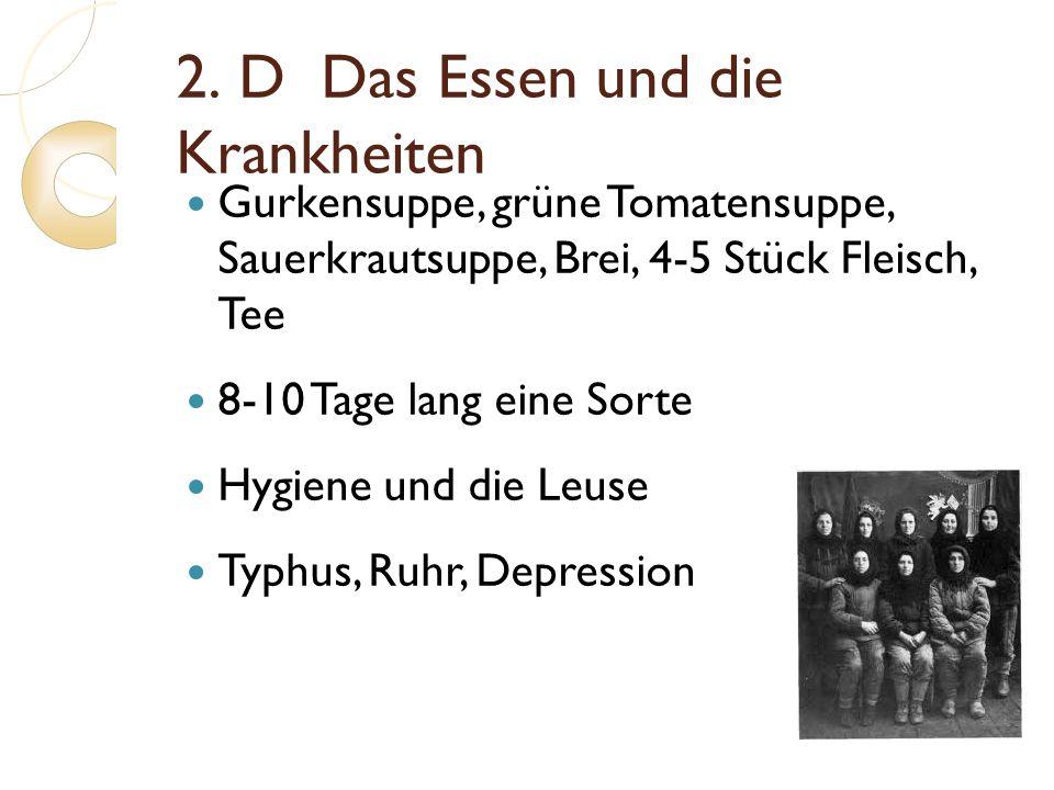 2. D Das Essen und die Krankheiten