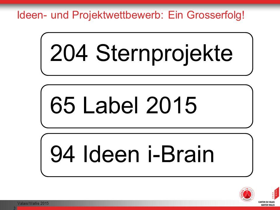 Ideen- und Projektwettbewerb: Ein Grosserfolg!