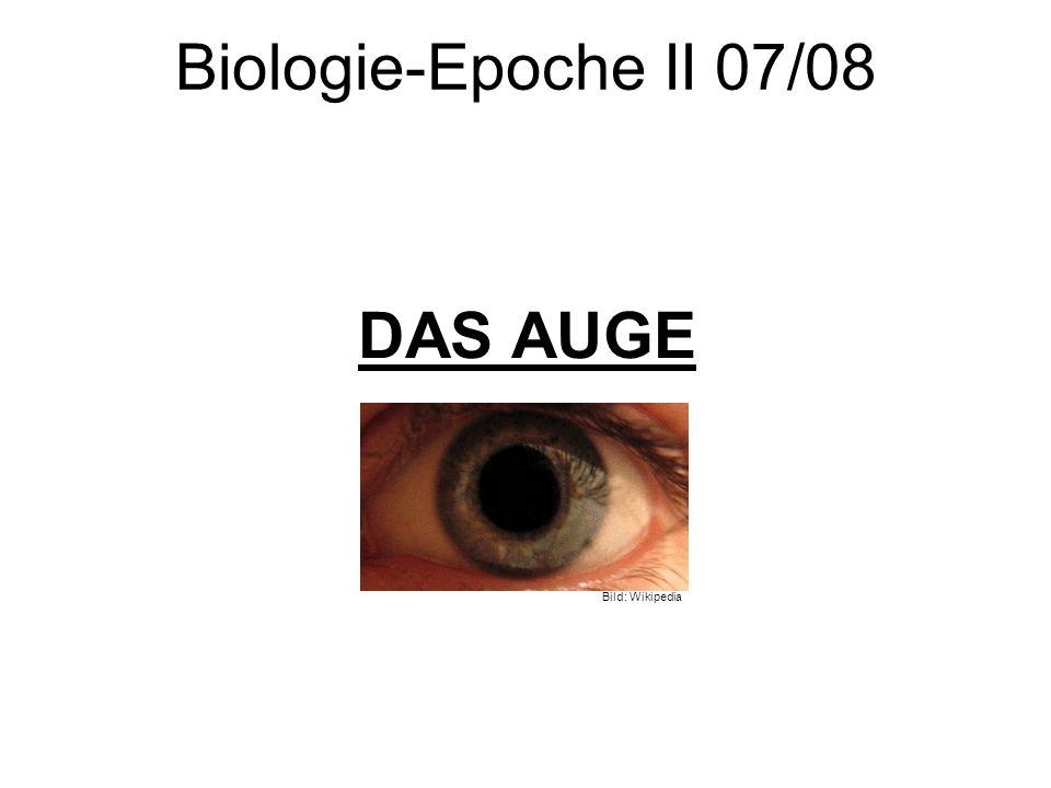 Biologie-Epoche II 07/08 DAS AUGE Bild: Wikipedia