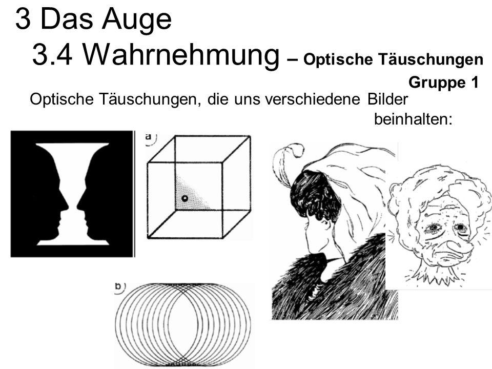 3 Das Auge 3.4 Wahrnehmung – Optische Täuschungen Gruppe 1