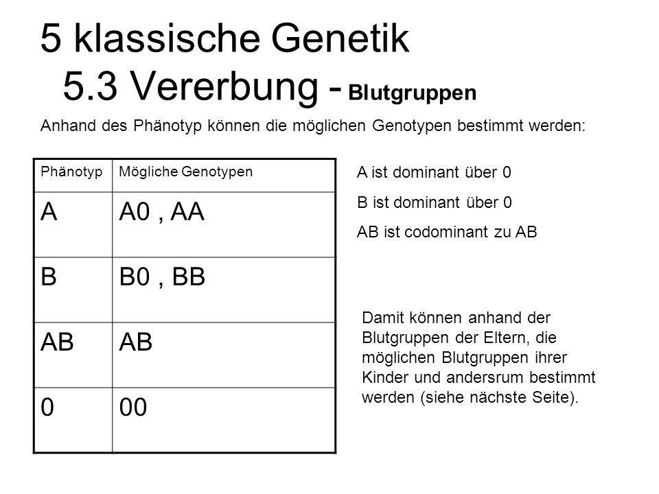 5 klassische Genetik 5.3 Vererbung - Blutgruppen