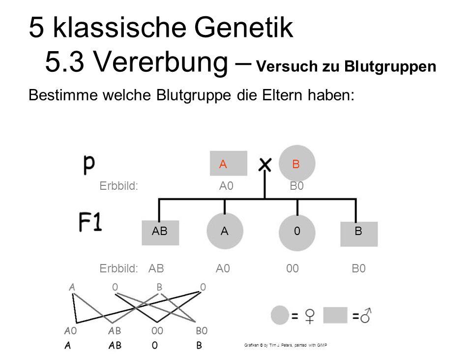 5 klassische Genetik 5.3 Vererbung – Versuch zu Blutgruppen