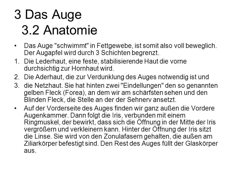 Beste Auge Anatomie Und Physiologie Animation Bilder - Menschliche ...