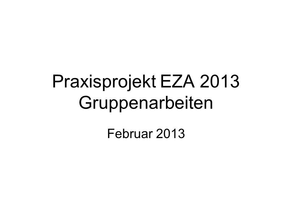 Praxisprojekt EZA 2013 Gruppenarbeiten