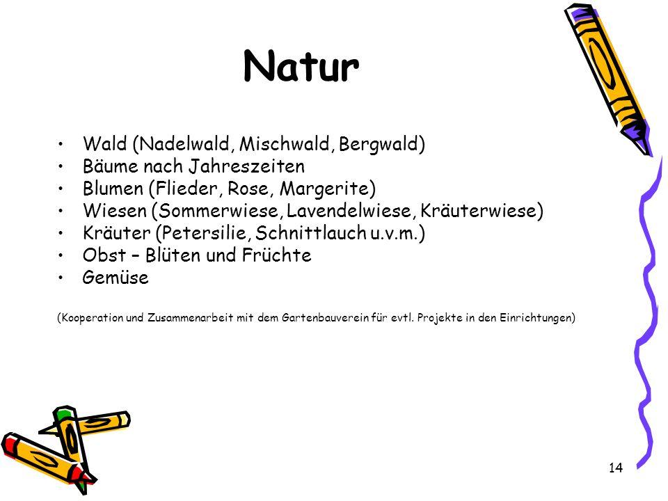 Natur Wald (Nadelwald, Mischwald, Bergwald) Bäume nach Jahreszeiten