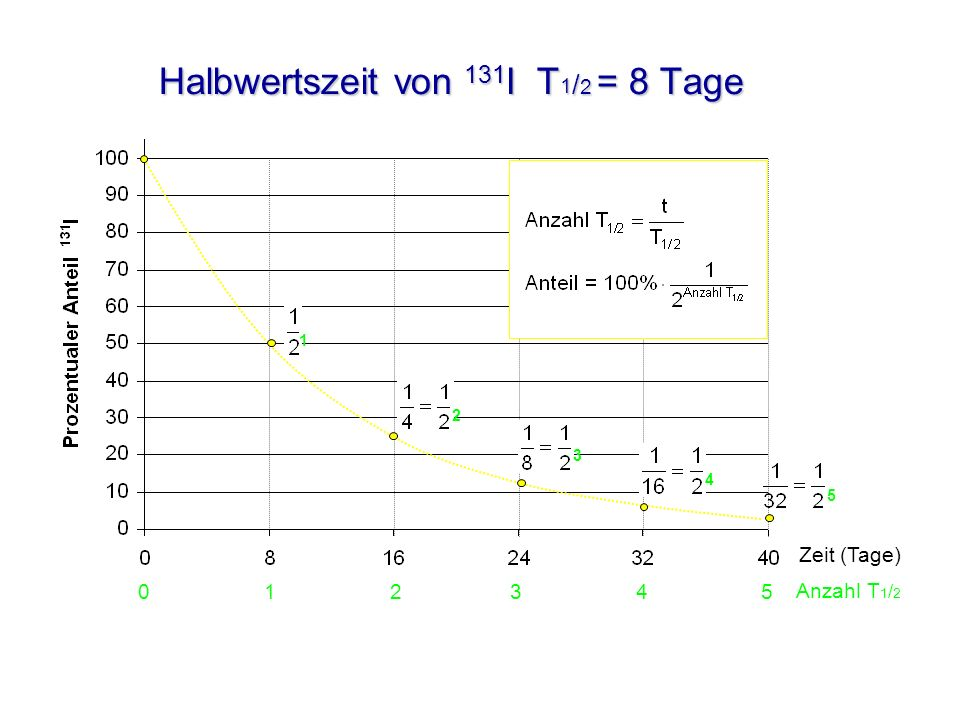 Halbwertszeit von 131I T1/2 = 8 Tage