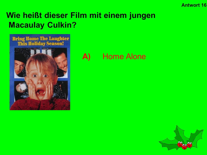 Wie heißt dieser Film mit einem jungen Macaulay Culkin