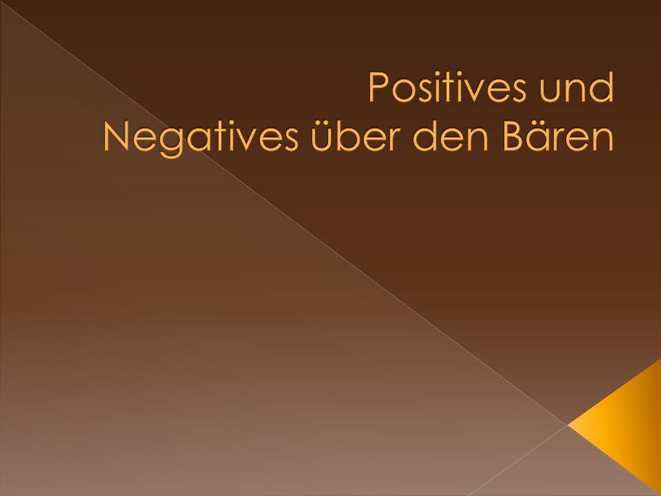 Positives und Negatives über den Bären