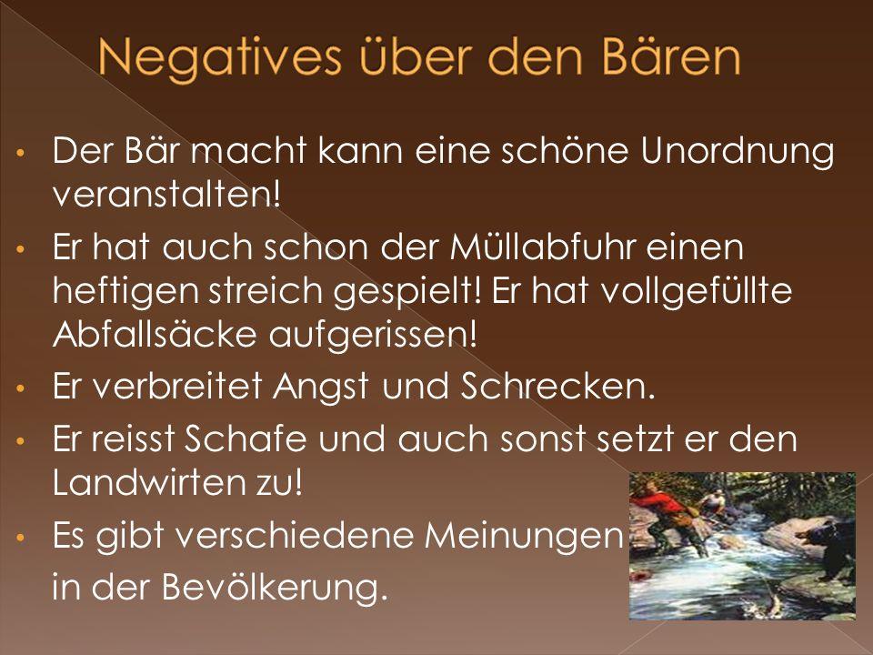 Negatives über den Bären