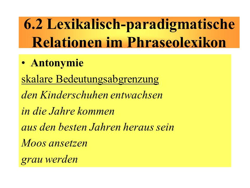 6.2 Lexikalisch-paradigmatische Relationen im Phraseolexikon