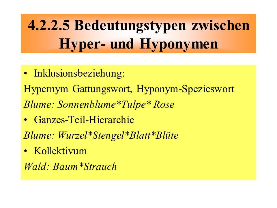 4.2.2.5 Bedeutungstypen zwischen Hyper- und Hyponymen