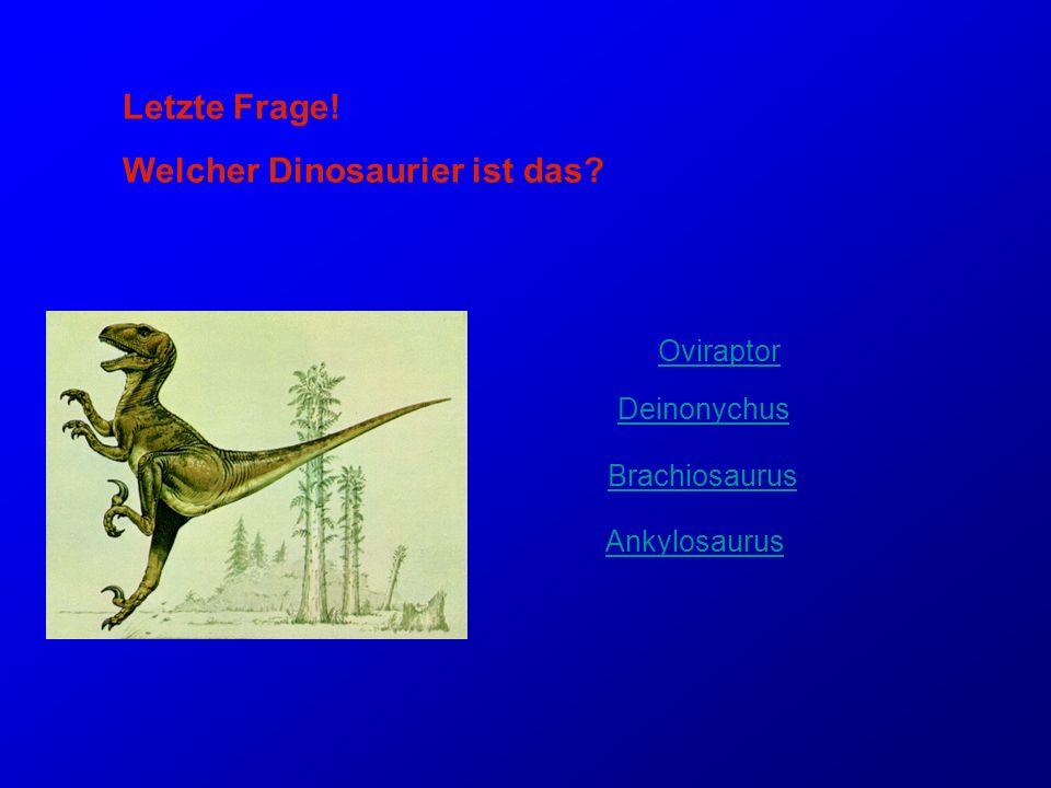 Welcher Dinosaurier ist das