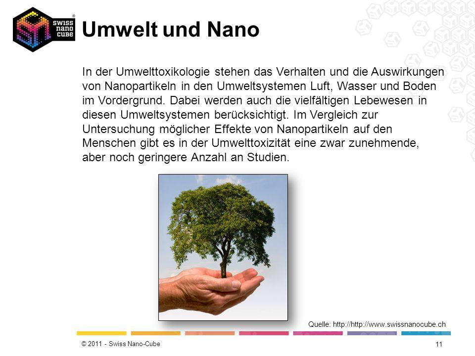 Umwelt und Nano