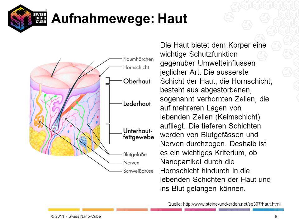 Charmant Bild Von Schichten Der Haut Fotos - Menschliche Anatomie ...