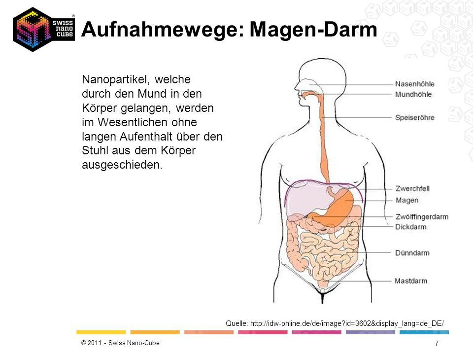 Aufnahmewege: Magen-Darm