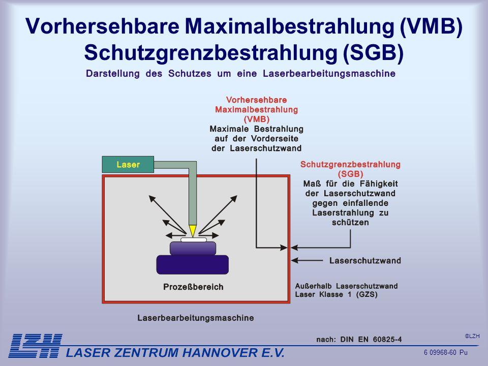 Vorhersehbare Maximalbestrahlung (VMB) Schutzgrenzbestrahlung (SGB)