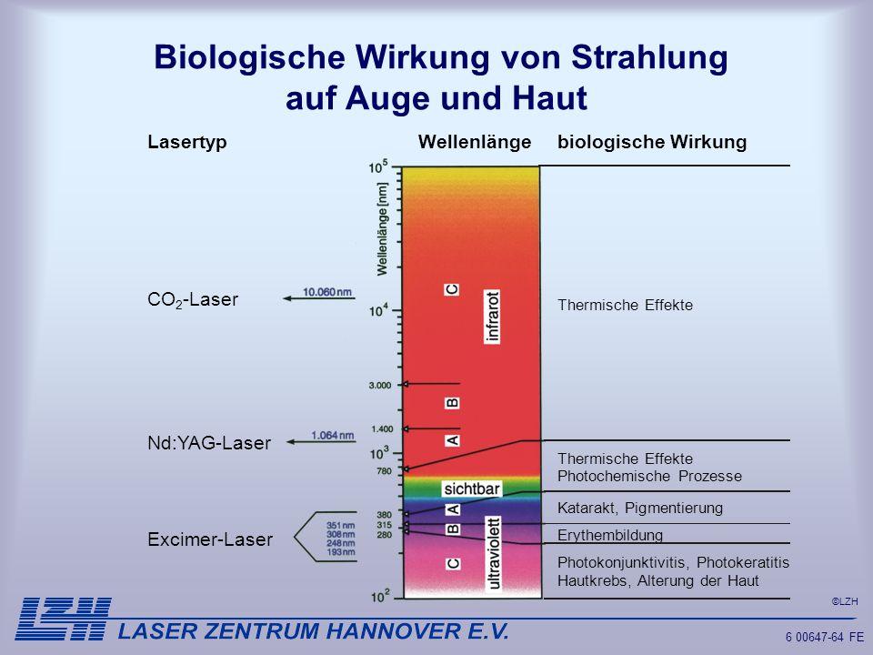 Biologische Wirkung von Strahlung auf Auge und Haut