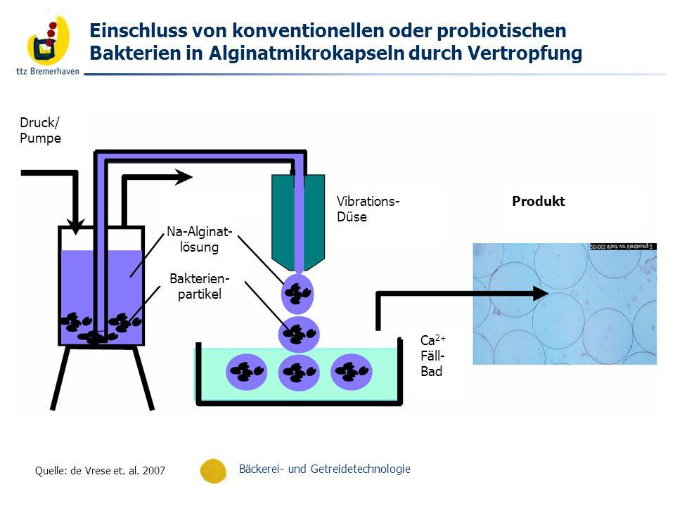 Einschluss von konventionellen oder probiotischen Bakterien in Alginatmikrokapseln durch Vertropfung
