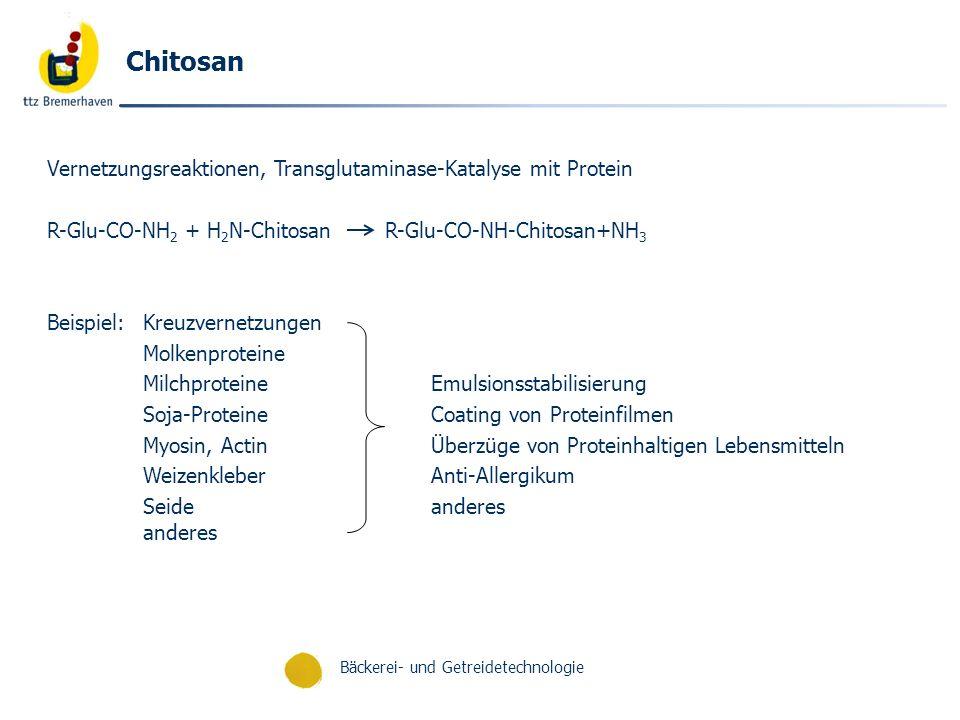 Chitosan Vernetzungsreaktionen, Transglutaminase-Katalyse mit Protein