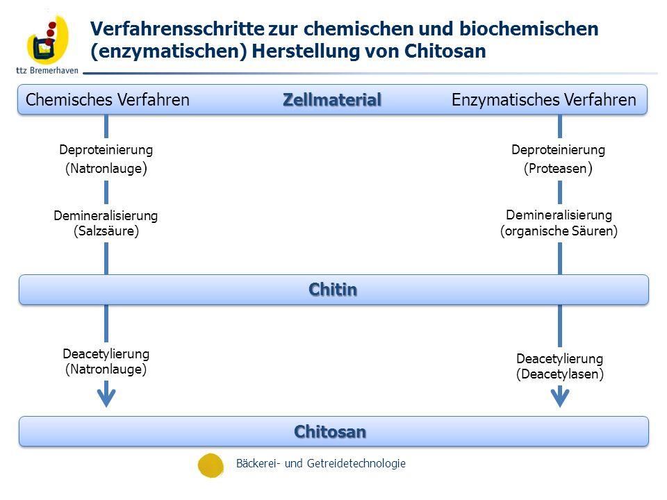 Verfahrensschritte zur chemischen und biochemischen (enzymatischen) Herstellung von Chitosan