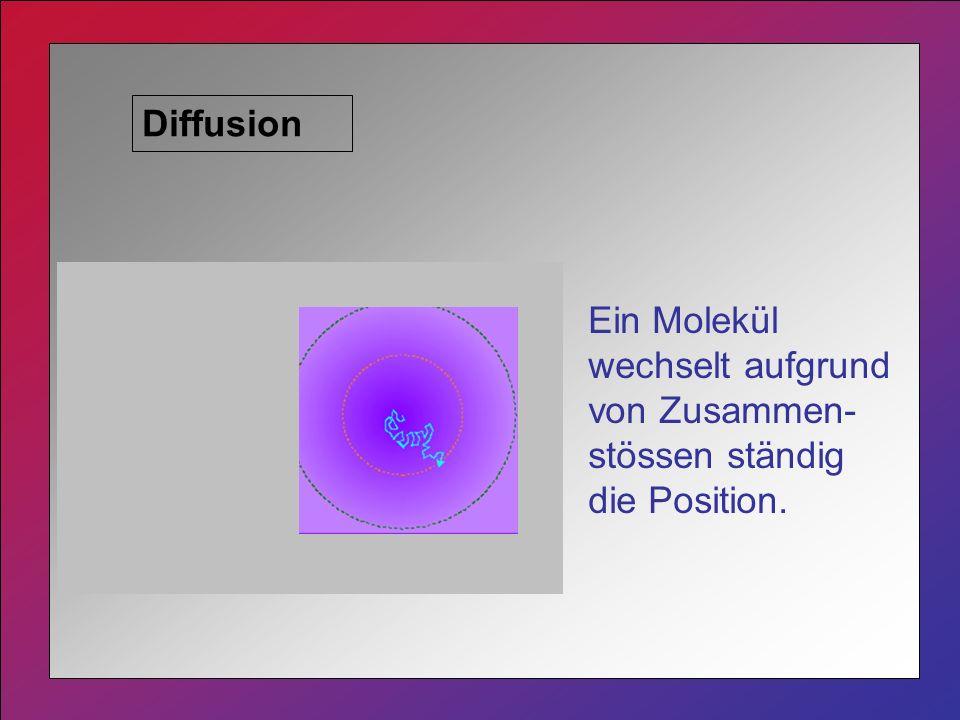 Diffusion Ein Molekül wechselt aufgrund von Zusammen-stössen ständig die Position.