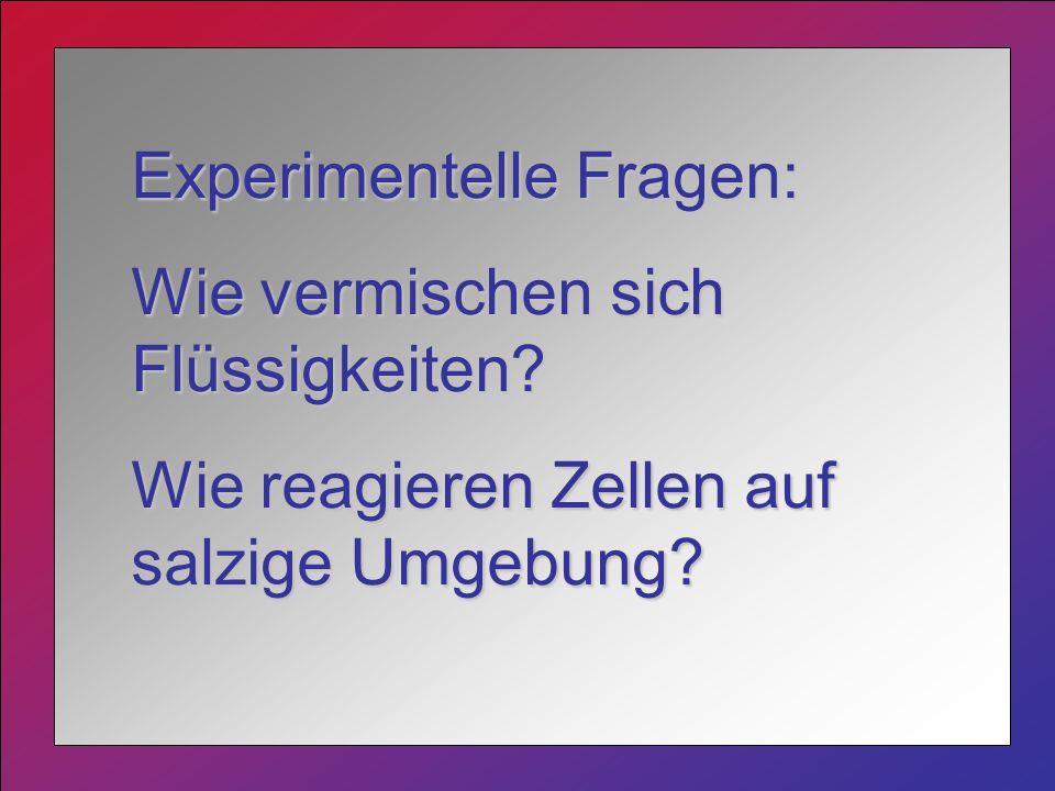Experimentelle Fragen:
