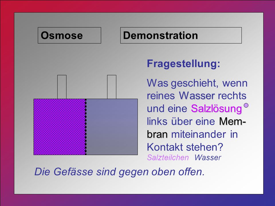 Osmose Demonstration. Fragestellung: