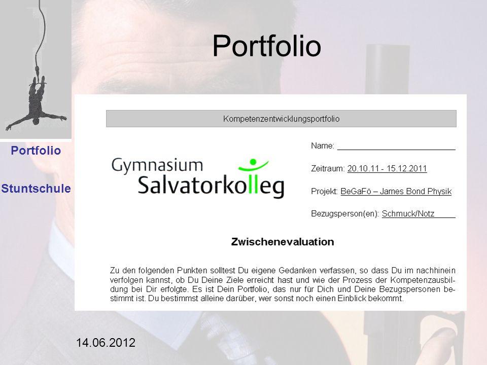 Portfolio Einleitung Analyse Portfolio Stuntschule 14.06.2012