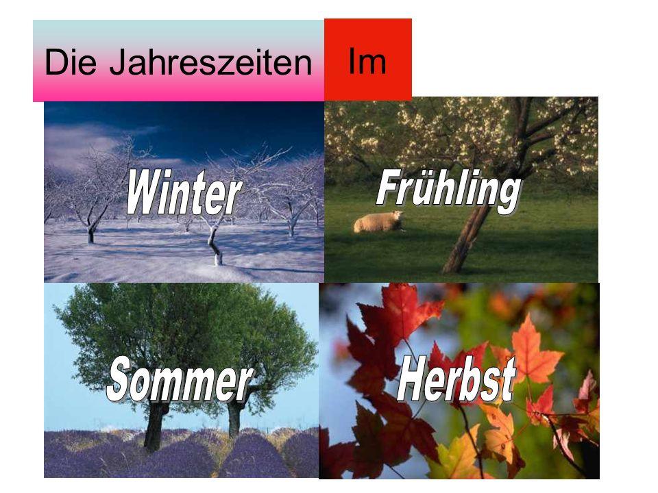 Die Jahreszeiten Im Winter Frühling Sommer Herbst