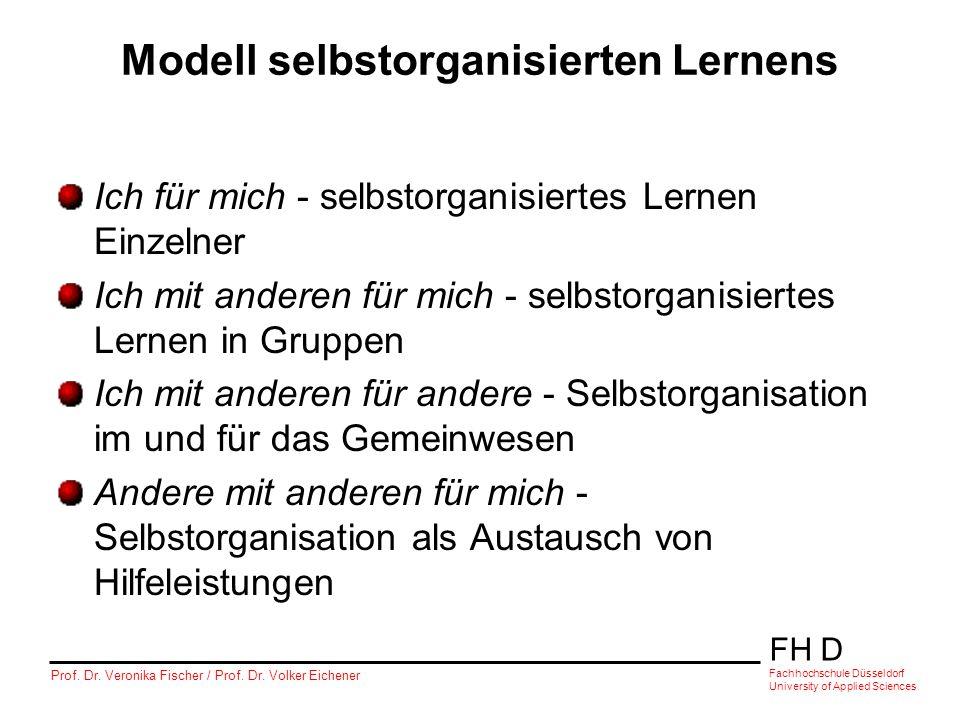 Modell selbstorganisierten Lernens