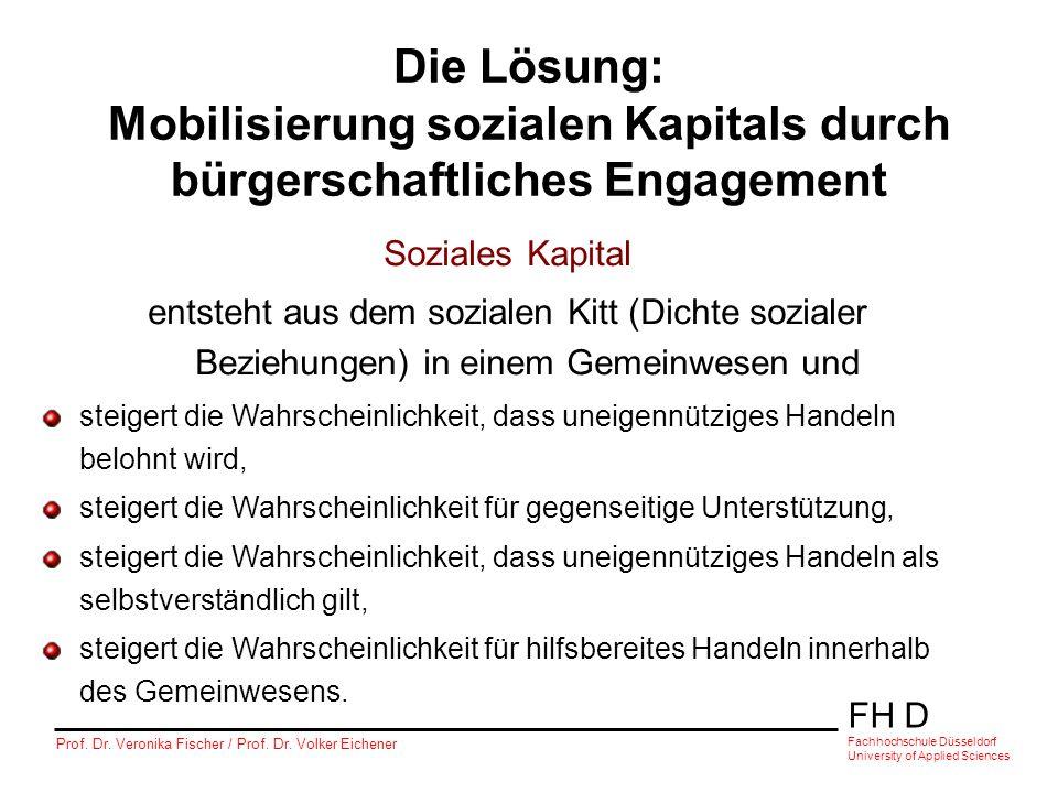 Die Lösung: Mobilisierung sozialen Kapitals durch bürgerschaftliches Engagement