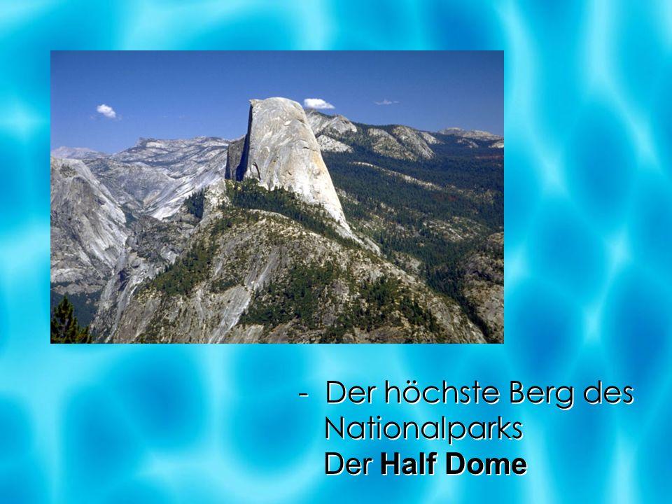 - Der höchste Berg des Nationalparks Der Half Dome