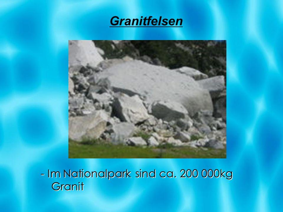 - Im Nationalpark sind ca. 200 000kg Granit