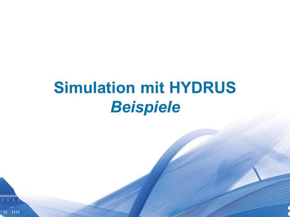 Simulation mit HYDRUS Beispiele
