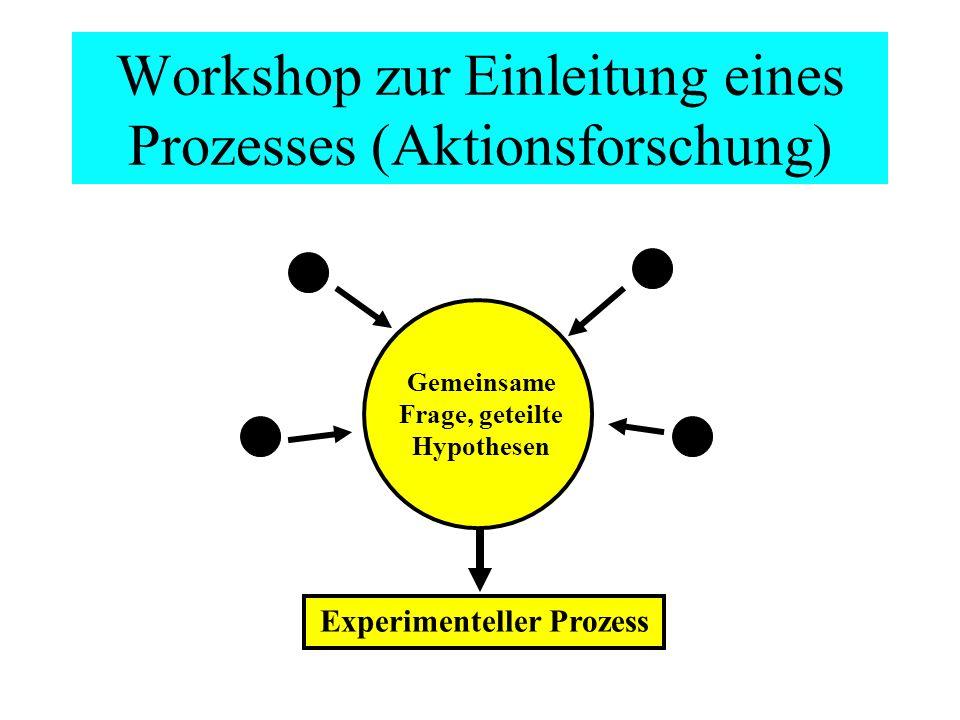 Workshop zur Einleitung eines Prozesses (Aktionsforschung)