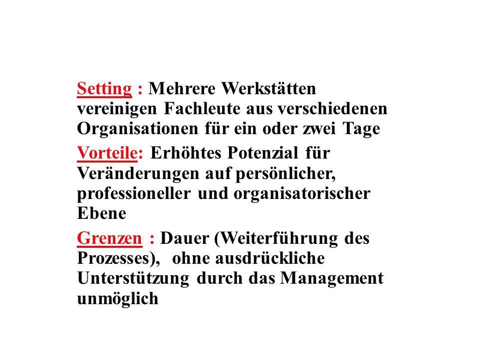 Setting : Mehrere Werkstätten vereinigen Fachleute aus verschiedenen Organisationen für ein oder zwei Tage
